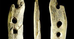 nástroj z paleolitu, credit (c) University of Tübingen
